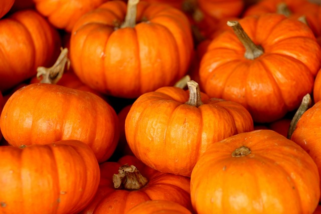 Pumpkin and Its Magickal Aspects - The Magick Kitchen