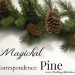 Magickal Correspondence: Pine