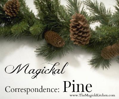 The Magick Kitchen Magickal Correspondence Pine2