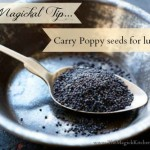 Magickal Tip Poppy Seeds