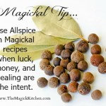 Magickal Tip Allspice