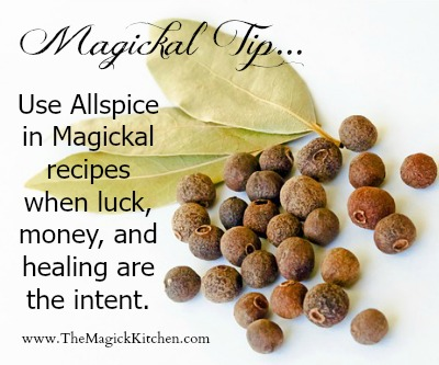The Magick Kitchen Magickal Tips Allspice for Money Luck and Healing