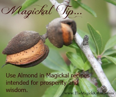 The Magick Kitchen Magickal Tips Almond for Prosperity  and Wisdon