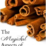 The Magickal Aspects of Cinnamon and Cassia