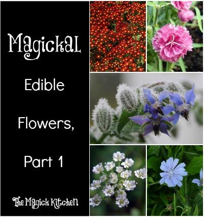 Magickal Edible Flowers Part 1 The Magick Kitchen400x426