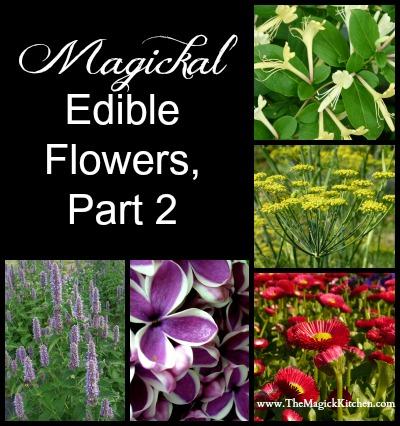 Magickal  Edible Flowers Part 2 The Magick Kitchen 400x426