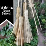 The Witches' Broom