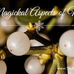 The Magickal Aspects of Mistletoe
