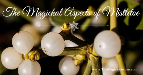 The Magickal Aspects of Mistletoe 470x246