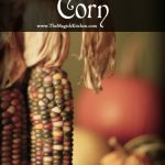 The Magickal Aspects of Corn
