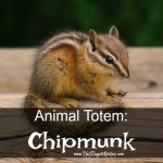 Animal Totem: Chipmunk
