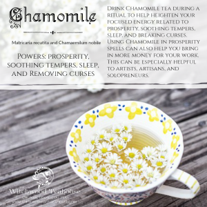 Magickal Aspects of Chamomile